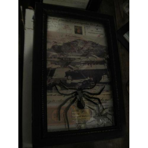 Charles Manson string artwork handmade 8 inches black spider from Corcoran state prison 2010